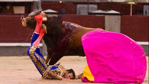 las-ventas-novillada-accidentée